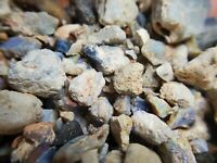 1lb Australian L/Ridge Black Opal Rough Bulk Lot Potential Green Blue Purple 16A