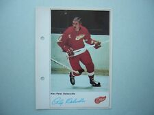 1971/72 TORONTO SUN NHL ACTION HOCKEY PHOTO ALEX DELVECCHIO SHARP!! TORONTO SUN