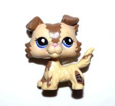 Littlest Pet Shop 2210 LPS Brown Beige Collie Puppy Dog Blue Eye LOSE FIGURE USA