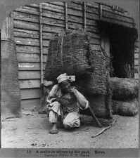 Photo:A coolie re-adjusting his pack,Korea,1903,unskilled labourer 8597