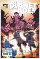 Planet of The Apes #11 A Cover - Boom Studios 2012