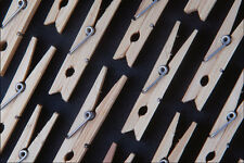 753043 Clothes Pins In Rows A4 Photo Texture Print