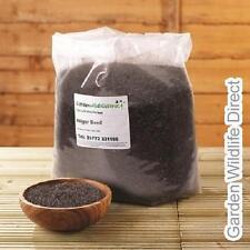 5kg NIGER SEED - Premium Wild Bird Nyger Nyjer Nijer Food Seed Feed Finch Bulk T
