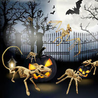 Skeleton Animal Skeleton Bones for Horror Halloween Party Home Decor NEW