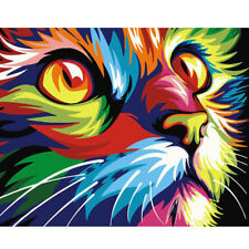 1 Set Home Decor Paint By Number Oil Painting DIY Kit Rainbow Cat No Frame Gift