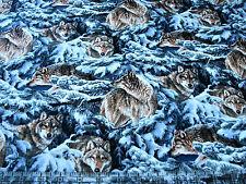 1 Yard Cotton Fabric - Springs Wild Wings Narrangansett Creek Wolf in Pines