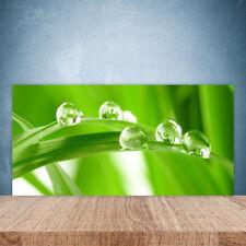 Crédence de cuisine en verre Panneau Paroi 100x50 Floral Feuilles
