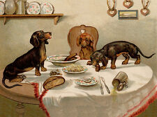 DACHSHUND CHARMING DOG GREETINGS NOTE CARD CUTE NAUGHTY DOGS ON DINNER TABLE