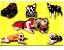 Rag Dog Pet Clothing-Outfits-Sweaters-Dressed Animal Advertising Postcard