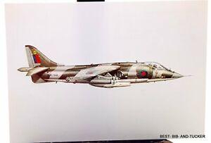 Royal Naval Air Service Hawker GR MK 1A postcard.