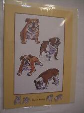 CARTE + ENVELOPPE - chien   BOULEDOGUE ANGLAIS