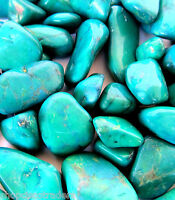 Green Howlite 20mm QTY1 Dyed Tumbled Stone Healing Crystal Calm Memory