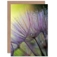 Close Up Macro Seeds Flower Dew Purple Blank Greeting Card With Envelope