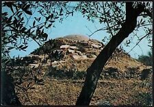 AA3005 Grosseto - Provincia - Vetulonia - Tomba etrusca La Pantera