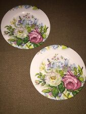 VINTAGE JAMES KENT VERY PRETTY PLATE x 2 ~ UNKNOWN BOLD FLOWER DESIGN