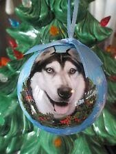 Siberian Husky ~ Christmas Ball Ornament #40