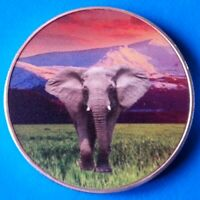 Zambia African Elephant 2015 UNC Africa Wildlife Color Coin