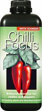 Chilli Focus Plant Food - 1 Litre - Liquid Nutrient Feed for Chilli Peppers