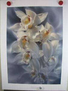 """Collin Bogle """"Fleur de Grace""""  White Orchid Flowers #25/999  Bouquet Botanical"""