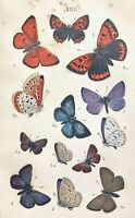 1860 Coleman BRITISH BUTTERFLIES with 179pp/HB/COLOR PLATES A Nice Copy Overall