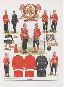 Vintage British Uniform Print 1879 24th (2nd Warwickshire) Reg Of Foot Zulu War