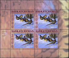 2000 Saskatchewan Pheasants Wildlife by Cynthie Fisher