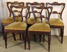 Set 5 antique carved English Regency mahogany dining chairs 1820 original patina
