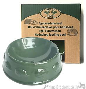 Ceramic Hedgehog Feed Bowl with hedgehog design green glaze hog lover gift boxed
