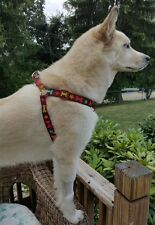 Dog Harness with Colorful Bones and Flower Designs From Petmate