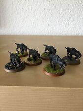 6 Warge, gut bemalt ~ Herr der Ringe Tabletop ~ Games Workshop ~ GW ~ Hobbit