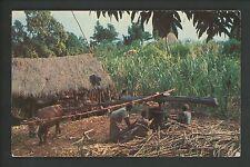 Industry Cane Sugar postcard Farming Sugar Cane Jamaica, B.W.I.
