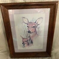 "Deer & Fawn Vintage Framed Print Paul Whitney Hunter 16 1/4"" X 13 1/2"""