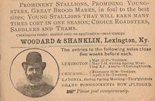 Woodward Shanklin 500 Horse Auction Lexington Kentucky 1894 Postal Card 7m