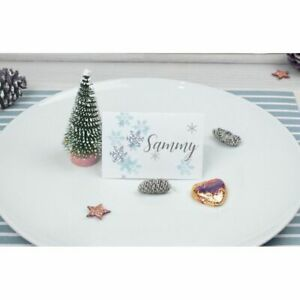 Personalised Christmas Dinner Table Name Settings Place Cards Gift Tag
