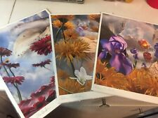 REDUCED 3 Signed Art Prints-Adam Bryant Chittenden-Photographic FlowerScapes