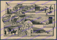Tsingtau Schutztruppe Post Signalstation Reichsfahne Yamen Priester China 1900