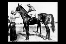 ELWOOD - USA 1904 Kentucky Derby winner modern Digital Photo Postcard