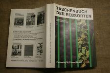 Fachbuch Weinbau Rebsorten alte Sorten Neuzüchtungen Sortenkunde Anbau Winzer