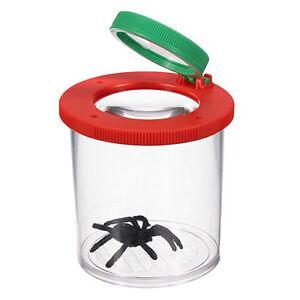 QUALITÄTS Lupendose Lupenbecher Lupenglas Insektenbecher Insektenglas Becherlupe