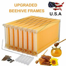 7Pcs Auto Collect Honeycomb Beehive Wax Frames Bee Hive Set For Beehive Box Us