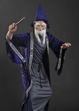 Adulto Disfraz de asistente de estilo Dumbledore