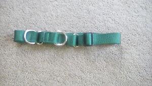 Nylon Dog Collar Large Green