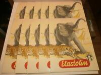 10 alte Hausser Elastolin Werbeposter Reklame Plakate mit Tieren Elefant Leopard