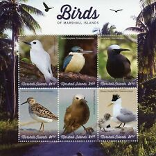 Marshall Islands 2019 MNH Birds Noddy Terns Kingfishers 6v M/S Waders Stamps