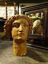 Slade 1950s Penelope Ellis Minerva Plaster Head Sculpture after the Antique