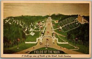 Murphy, North Carolina Postcard FIELDS OF THE WOOD Artist's View Curteich c1960s