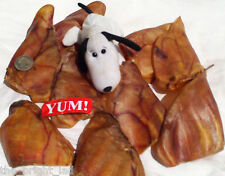 40 Large AUSTRALIAN (SAFE!) Pig Ears. Pro dried Treat/Chew 4 Pet Dog. Read why!