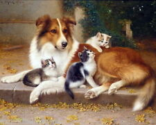 Antique Art~W.Schwar~Beautiful Collie Dog with Kitty Cats~ New Large Note Cards