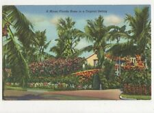 A Miami Florida Home In A Tropical Setting Vintage Postcard 476a