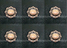 """Set of 6 Western Horse Saddle Tack Copper Color Berry Conchos 1"""" screw back"""
